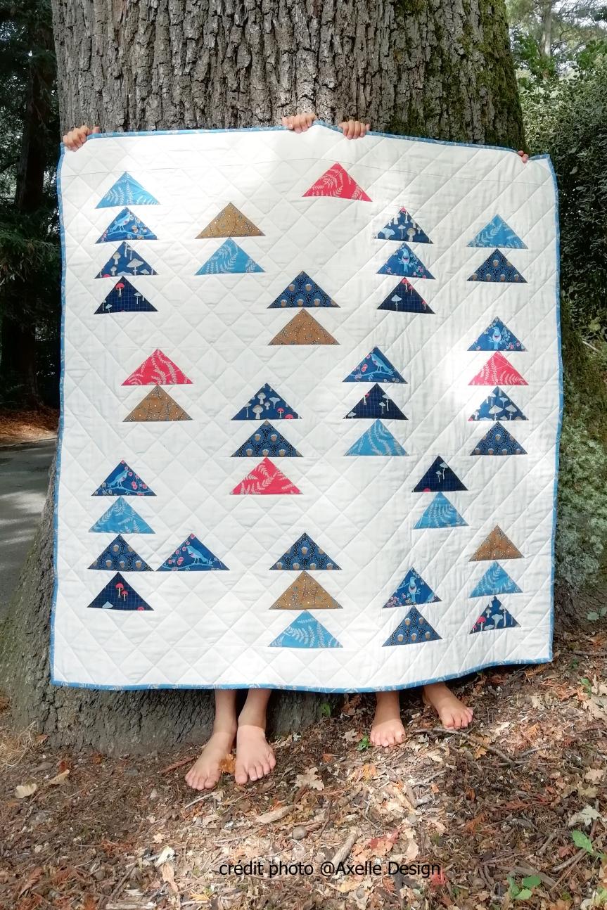 Forest Gifts d'Axelle Design: mon quilt à Houston!